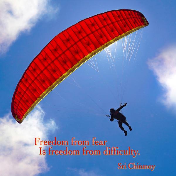freedom from fear.jpg