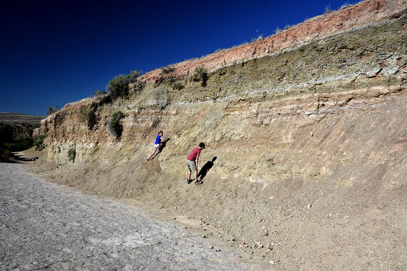 RedGulch-dinosaur-trackway-huntingforfossils.jpg