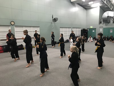 Combat Self Defence Grading June 2017