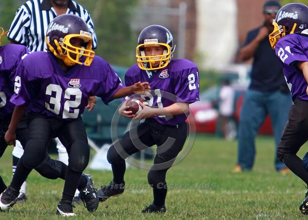 Mitey Mite Purple v. Webster 9-7-08