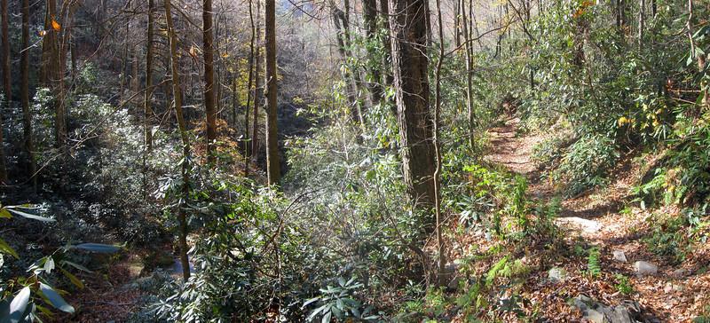 Spence Ridge Trail -- 2,400'