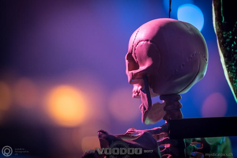 Voodoo_2017_037.jpg