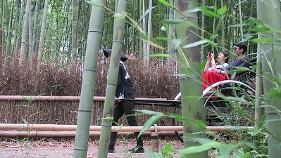 Bamboo Forest Stop movie
