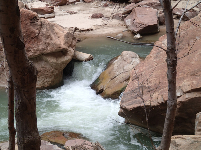 Zion National Park - Ashley 43.JPG
