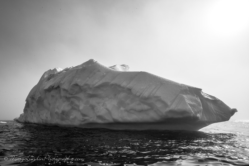 Antarctic-7