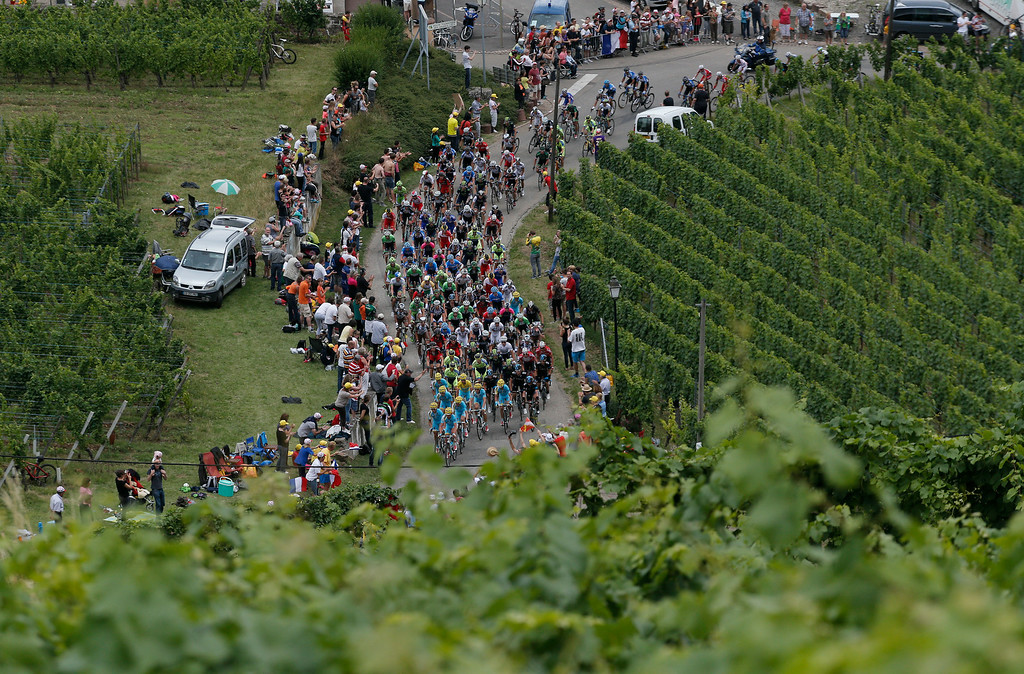 . The pack passes vineyards for the Alsace province\'s white wines during the ninth stage of the Tour de France cycling race over 170 kilometers (105.6 miles) with start in Gerardmer and finish in Mulhouse, France, Sunday, July 13, 2014. (AP Photo/Christophe Ena)