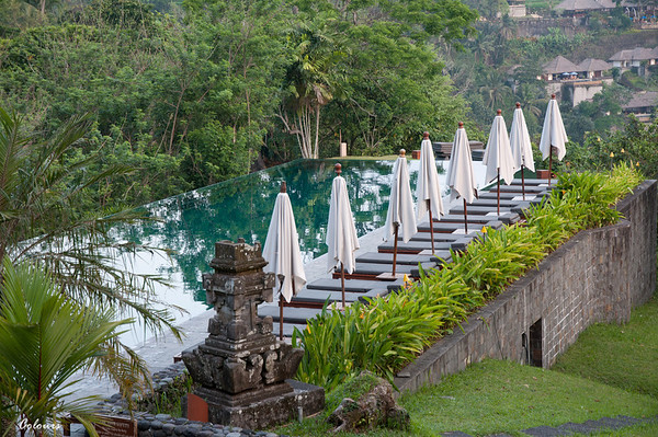 Starting in Ubud