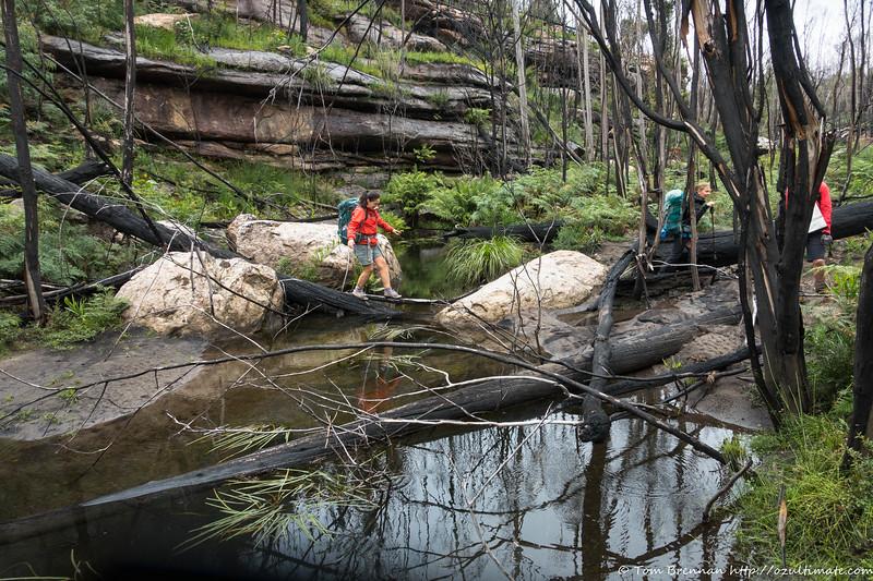 Jo crossing Bainbrig Creek high up