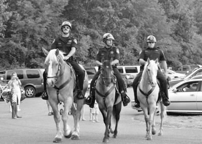 SCSO Mounted