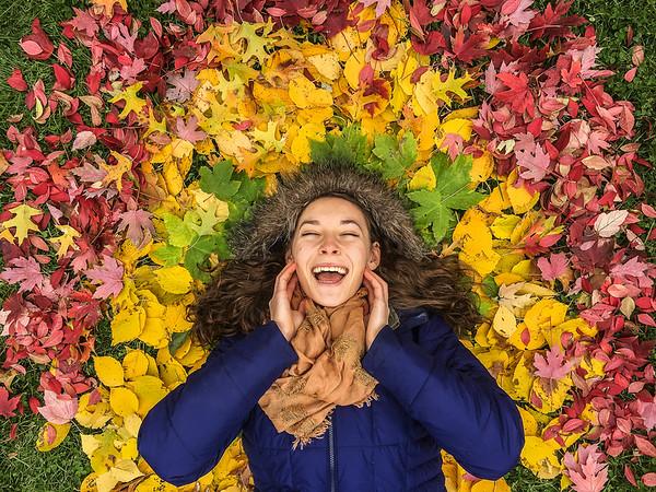 Autumn in Iowa