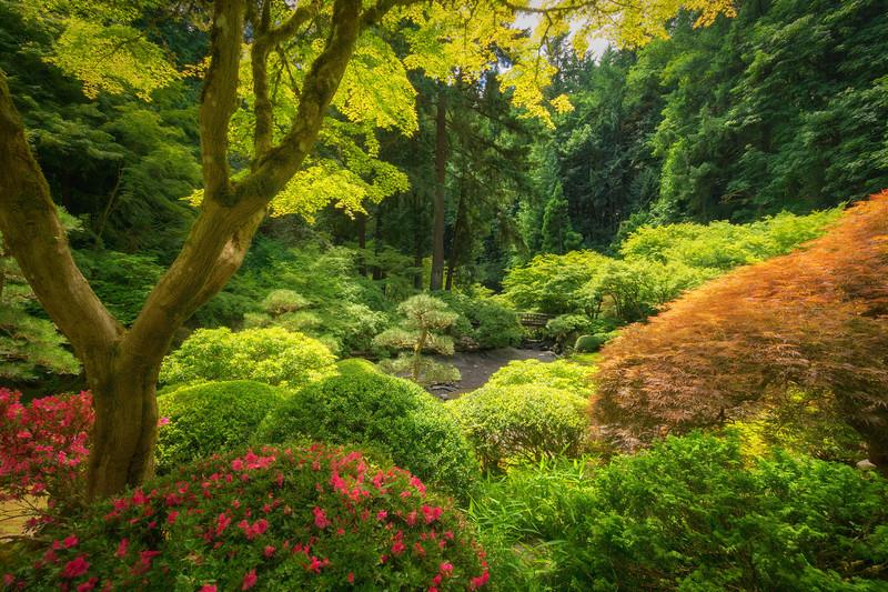 Portland Japanese Tea Garden