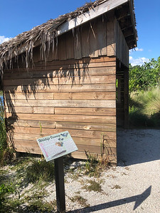 Part 3 of 12: Perico Preserve