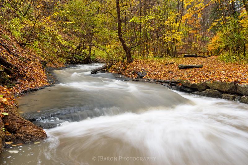Fall-Run-Park-9308.jpg