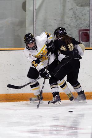 2010-11 Women's Hockey