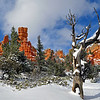 """Desert Southwest : """"I am restored in beauty. I am restored in beauty. I am restored in beauty."""" ~ Navajo prayer"""