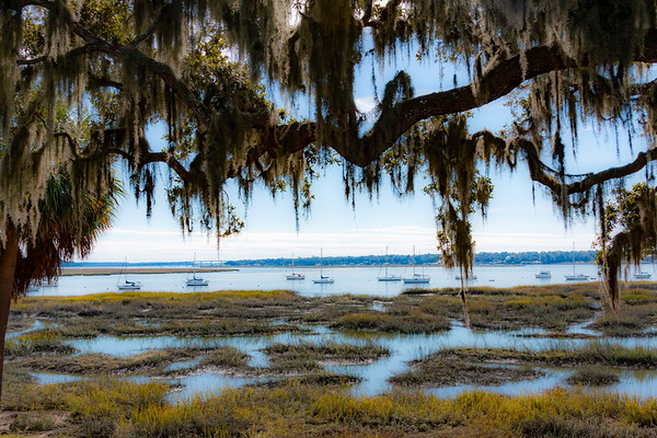 The Sea Islands of South Carolina 11-16-2019