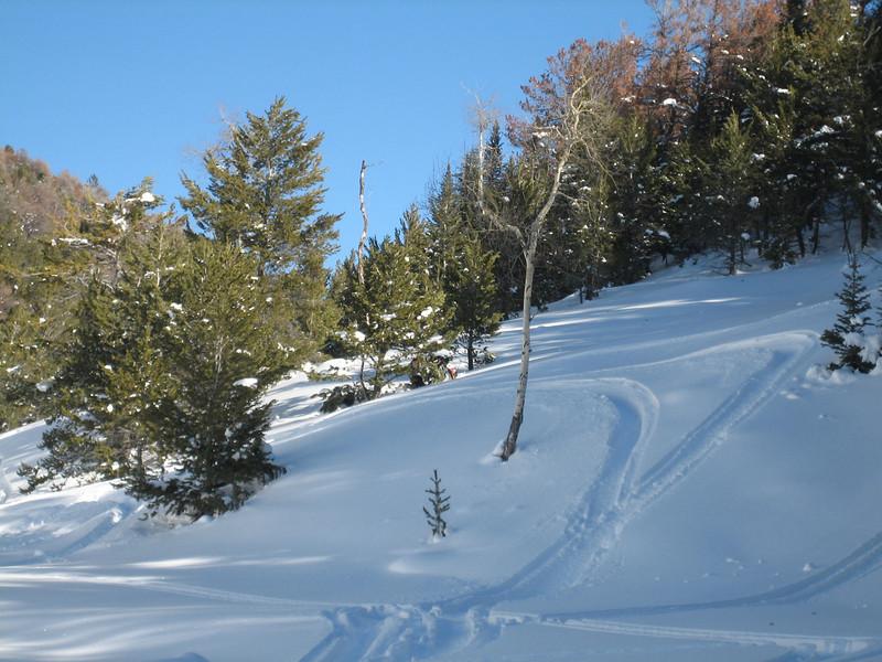 Bear Lodge Jan09 004.jpg