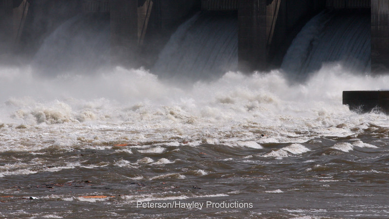 Little Goose Dam 3.jpg