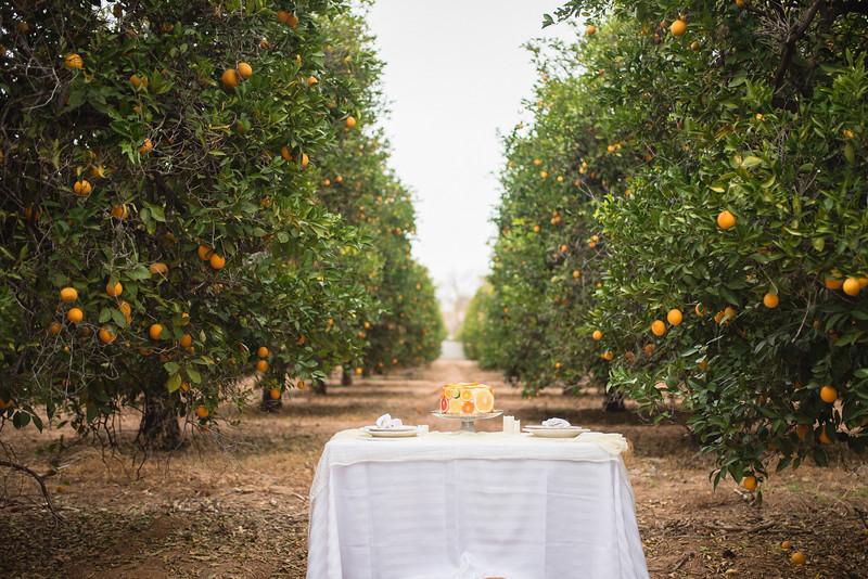 Citrus Styled Shoot (102 of 120).jpg