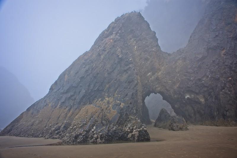 Hug Point to Cape Falcon - 2020/09/06