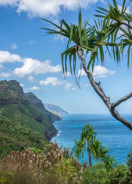 hawaii026.jpg