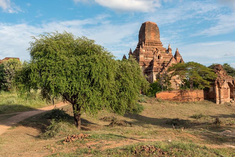 Sein Nyet Ama, Bagan