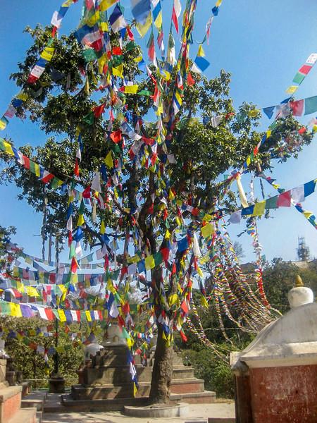 Swayambhunath 033.jpg