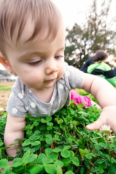lenora in the clover.jpg