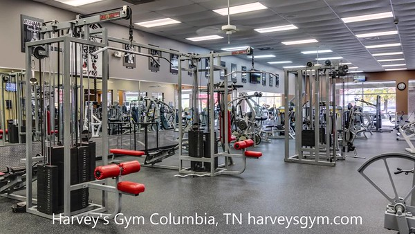 Video Harvey's Gym