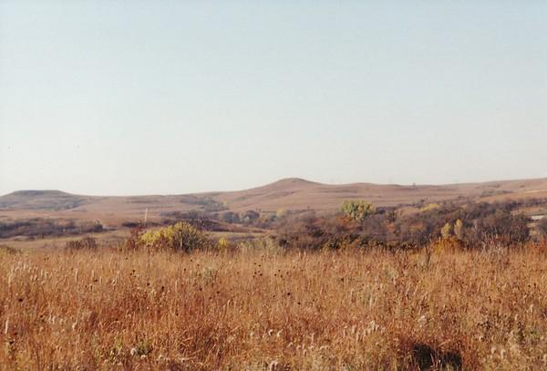 2000 Konza Prairie