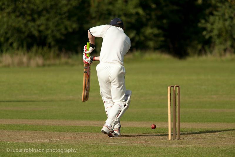 110820 - cricket - 378.jpg