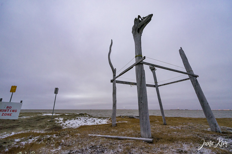 Utqiagvik-6602-Juno Kim.jpg