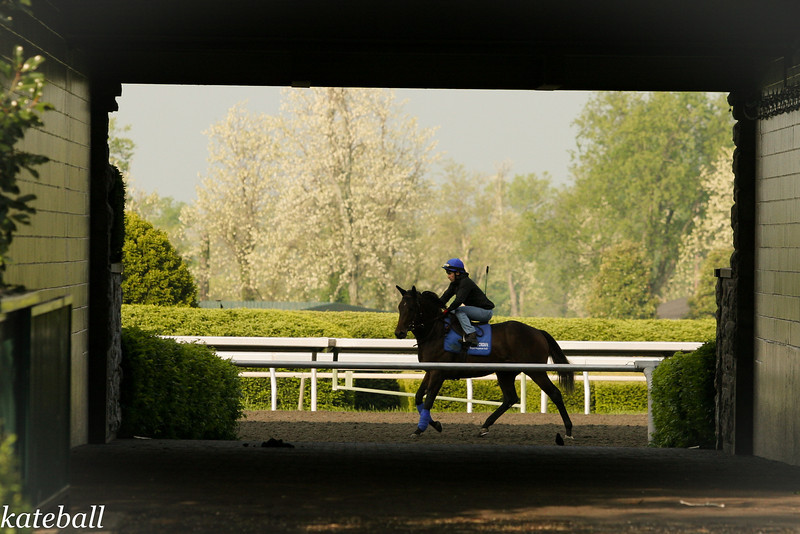 Keeneland Works 5.04.11 kb