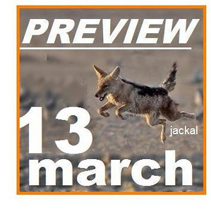 13 MAR. PREVIEW