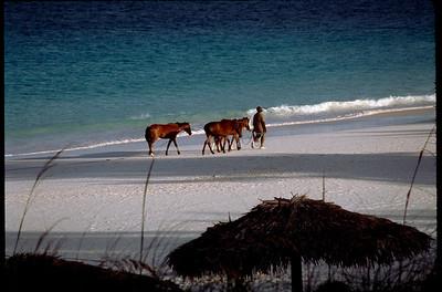 Harbour Island, Bahamas 1999