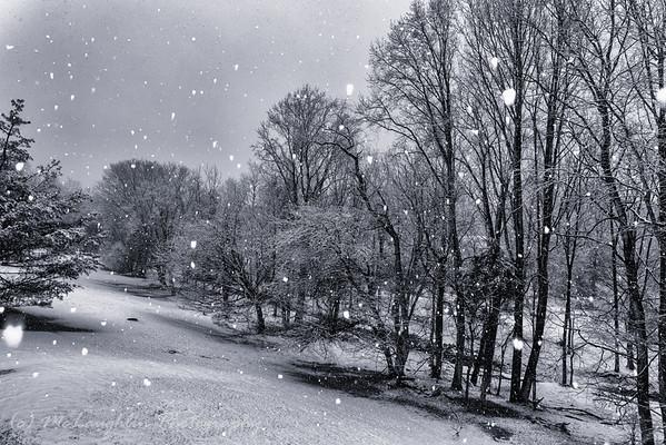 Snowmageddon 2
