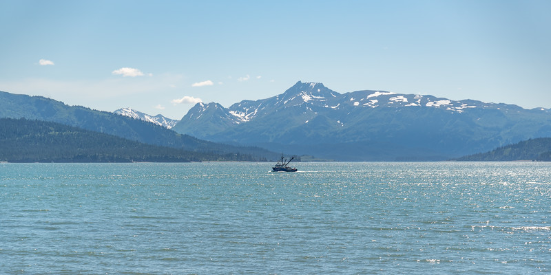 AlaskaSummer2018-1389.jpg