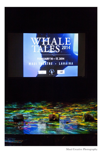 WhaleTales_2014_163.jpg