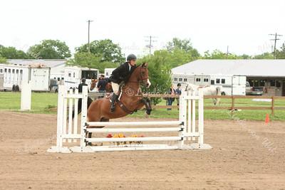 2014 Arabian Region 13 Championships/Hoosier Horse Classic