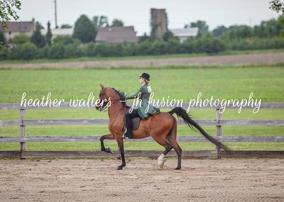 Summer Solstice Horse Show 2020
