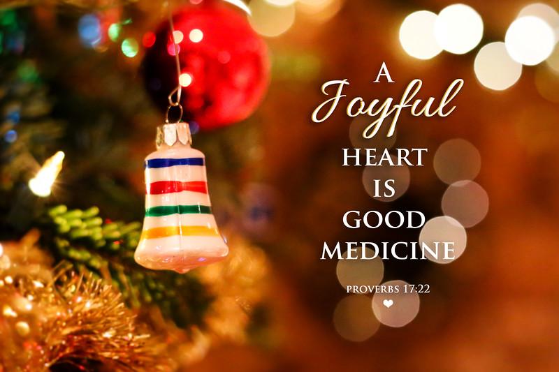 20_Proverbs17-22_NJ_2017-12-24.jpg