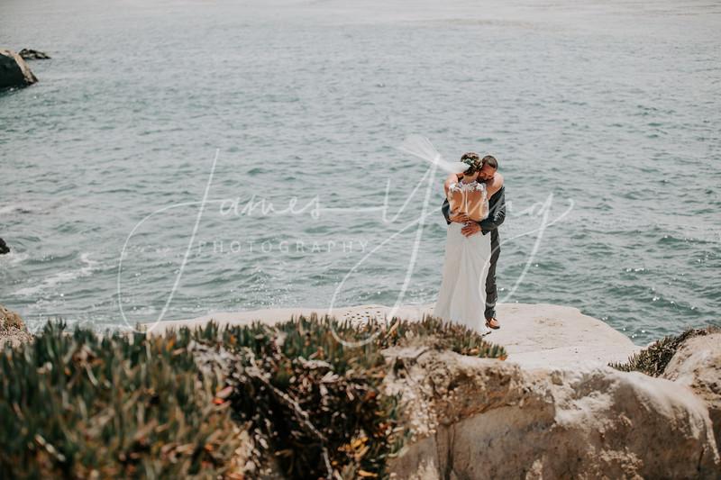 des_and_justin_wedding-2216.jpg
