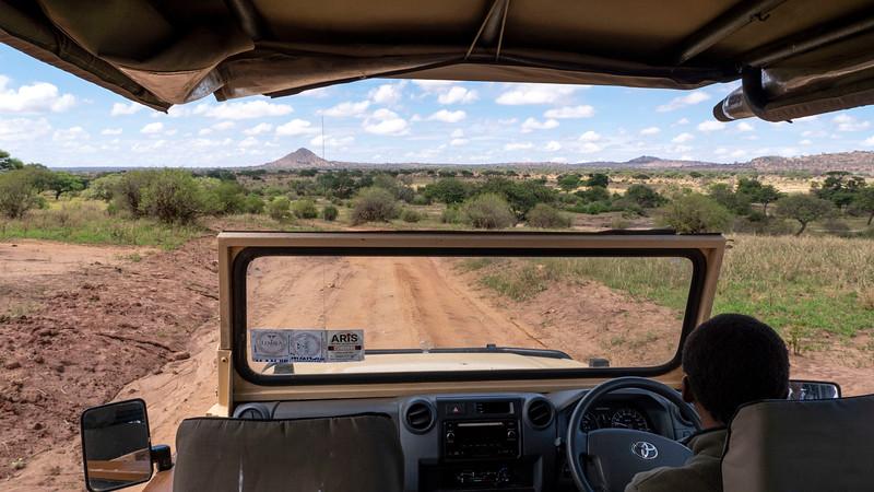 Tanzania-Tarangire-National-Park-Safari-13.jpg