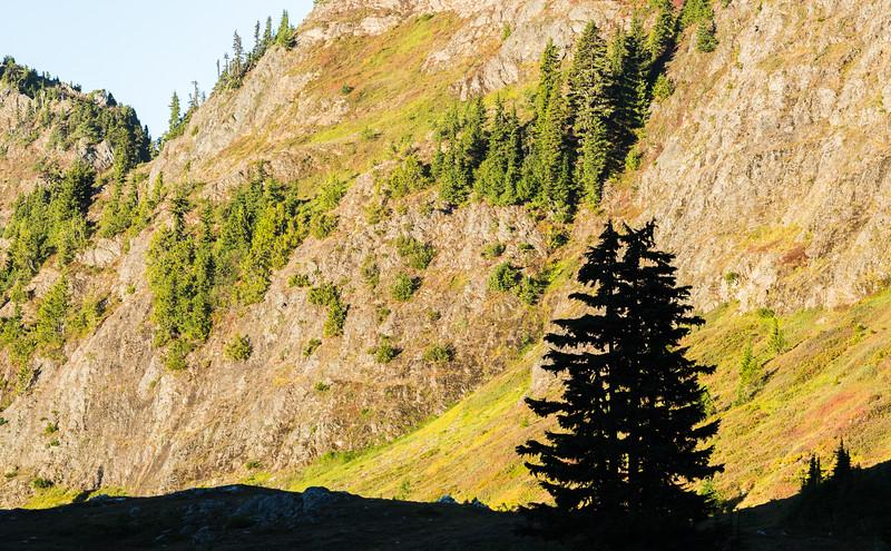 Light Rises on the Bearslopes