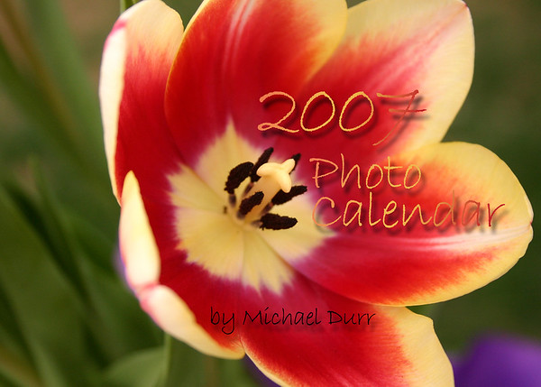 2007_Calendar