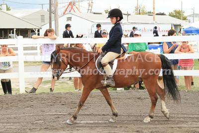 Hunter Under Saddle, p12