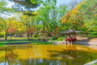 Changdeokgung Palace Secret Garden