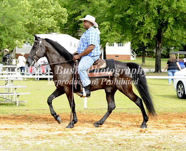 CLASS  16 COUNTRY PLEASURE OPEN SPECIALTY