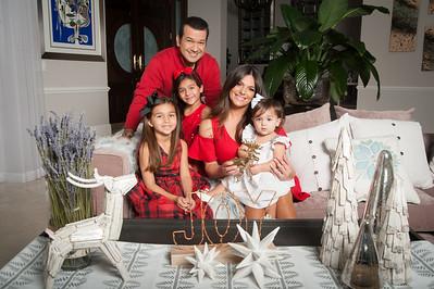 Target Christmas 2016 Barbara Bermudo