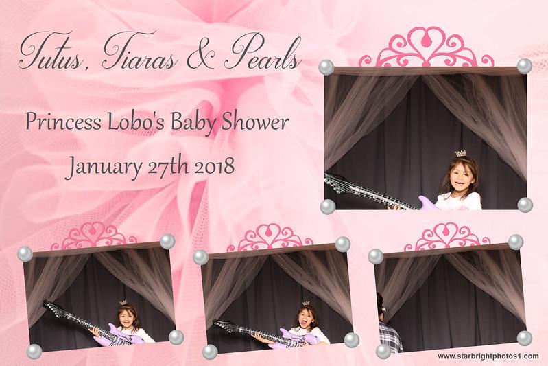 Lobo Baby Shower_04.jpg